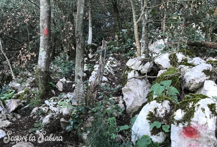 percorsi trekking monte soratte